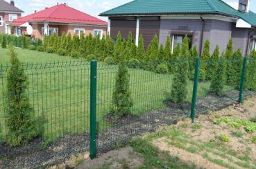 сетчатый забор для дачи